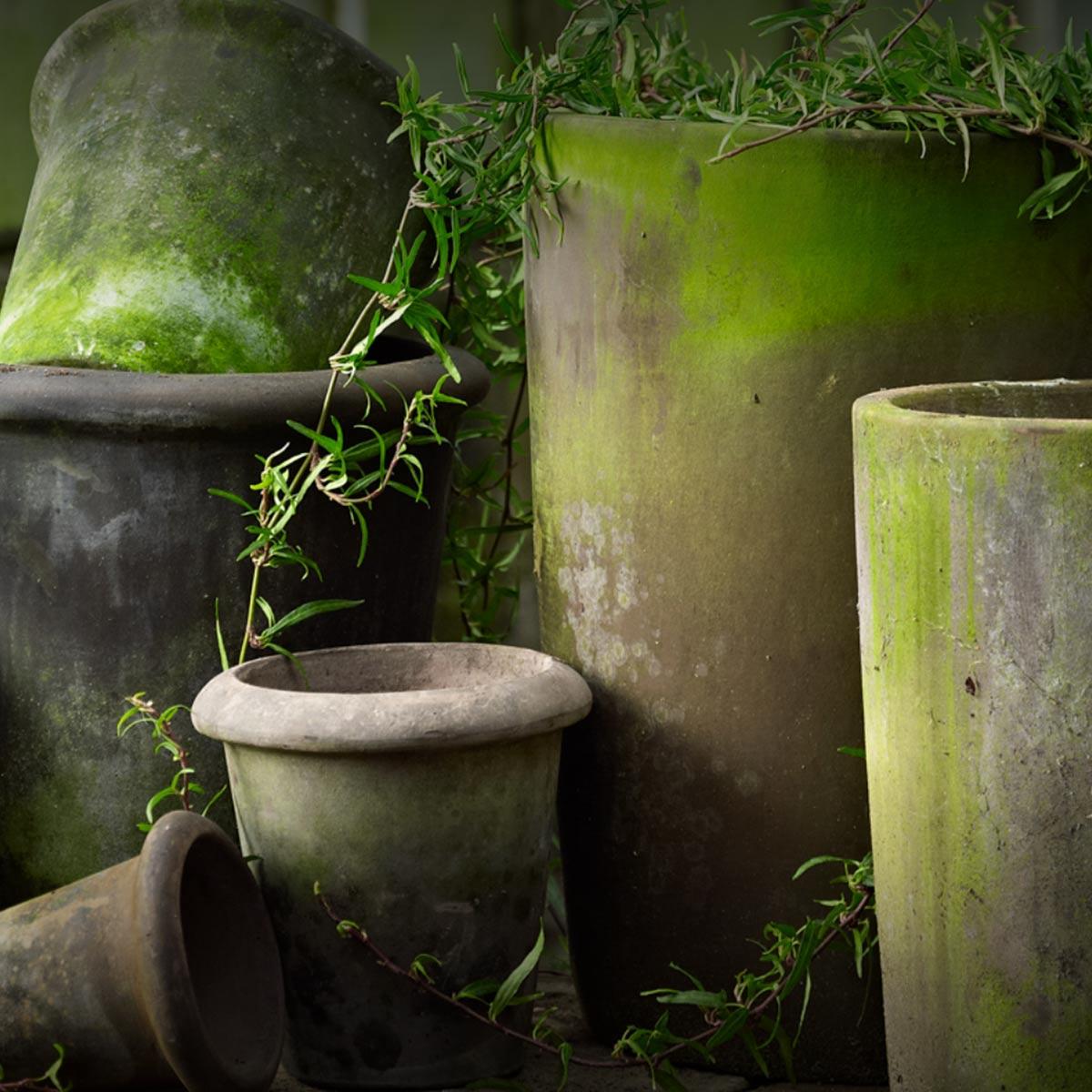 Grøn profil til B•Green